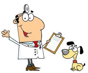 Плановый осмотр ветеринара